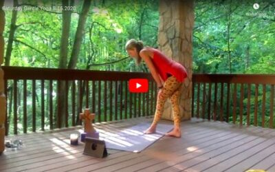 CLASS:  Saturday Gentle Yoga, 8.15.2020