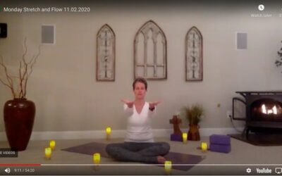CLASS:  Monday Stretch and Flow , 11.02.2020